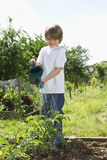 Boy Watering Plants In Garden Royalty Free Stock Photo