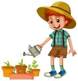 A Boy Watering the Plants. Illustration stock illustration