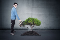 Boy watering the tree Royalty Free Stock Image