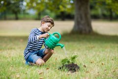 Boy watering a young plant Royalty Free Stock Images