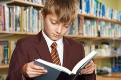 Boy Wearing School Uniform Reading Book In Library. Boy Wearing School Uniform Reads Book In Library Royalty Free Stock Photography