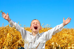 Boy in wheat field Royalty Free Stock Images