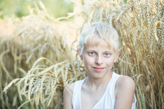 Boy in a wheat field Royalty Free Stock Image