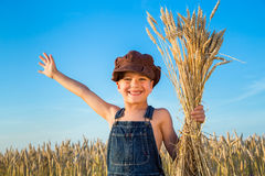 Boy on wheat field Stock Photos