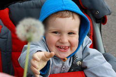 A boy in a wheelchair. Royalty Free Stock Image