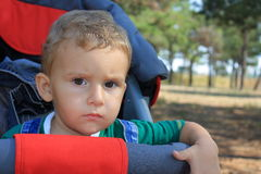 Boy in a wheelchair. Royalty Free Stock Photography