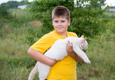 Boy with white cat Royalty Free Stock Photo