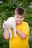 Boy with white cat Stock Image