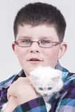 Boy with white kitten Stock Photo