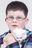 Boy with white kitten. Boy with glasses holding a white kitten Stock Photo