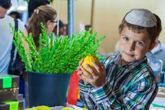 The boy in white skullcap with etrog. Holiday market in Jerusalem. Seven year old boy in white skullcap with etrog. Ritual plants - myrtle prepared for sale Royalty Free Stock Photo