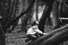 Boy on White Sweater on a Tree Royalty Free Stock Photo