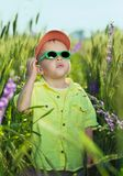 The boy in wild flowers Stock Image