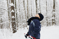 Boy in winter forest looking up Royalty Free Stock Photo