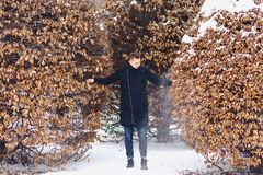 Boy in a winter jacket among the winter trees. Boy in a winter jacket among the trees in winter Stock Photo