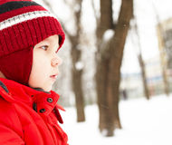 Boy in winter park Stock Images