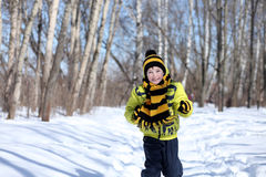 Boy in a winter park Stock Photography