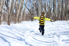 Boy in a winter park Royalty Free Stock Image