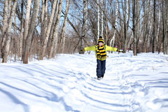 Boy in a winter park Royalty Free Stock Photo
