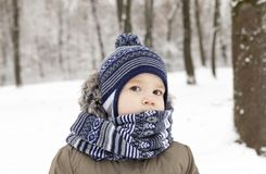 Boy in winter park Stock Image