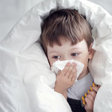 Boy wipes his nose. With a tissue Royalty Free Stock Image