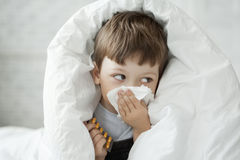 Boy wipes his nose with  tissue Royalty Free Stock Photography