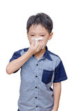 Boy wipes his nose by tissue paper Royalty Free Stock Photos