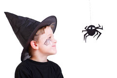 Boy in witch hat and black spider Stock Images