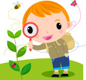 Boy With Magnifying Glass With Lady Bugs Over Royalty Free Stock Photo