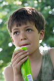 Boy With Snack Stock Images