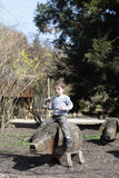 Boy on a wooden pig Stock Photography