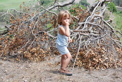 Boy in the woods. Little boy collecting a pile of branches to make a hide out Royalty Free Stock Photography