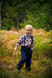 The boy in the woods Stock Photos