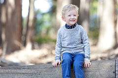 Boy in the woods Royalty Free Stock Photography