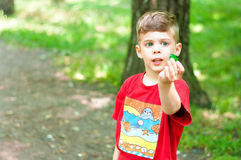 Boy in the woods Royalty Free Stock Images