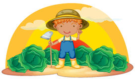 Boy working in farms. Illustration of a boy working in farms Stock Images