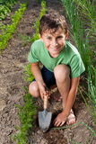 Boy working in the garden Stock Images
