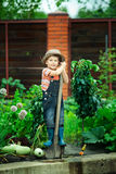 Boy working in the garden Royalty Free Stock Photo