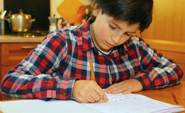 Boy writes on his notebook Stock Photography