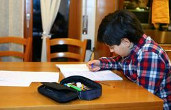Boy writes on his notebook Royalty Free Stock Photo