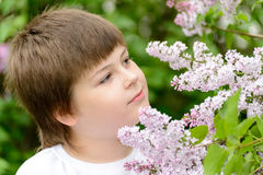 Boy 10 years near  blooming lilacs Royalty Free Stock Photos