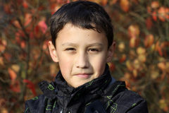 Boy 10 years old against colors leafs in falling Stock Photo