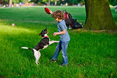 The boy of 8-9 years plays in park with the dog. Stock Photos