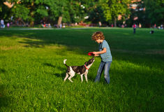 The boy of 8-9 years plays together with the doggy on a green grass in park. The little fellow holds red frisbee in hand. The black-and-white playful dog has Stock Images