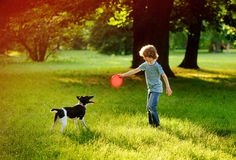 The boy of 8-9 years trains in park with the dog. Royalty Free Stock Photography