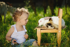 Boy with yellow duckling and rabbit in summer village Stock Images