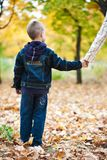 Boy in the yellow leaves Royalty Free Stock Photo