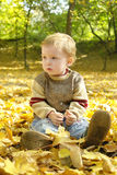 Boy on yellow leaves Royalty Free Stock Photos