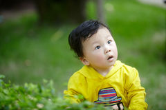 Boy in yellow Stock Photo