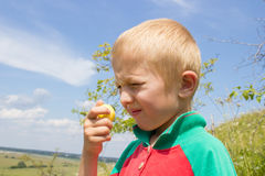 Boy with yellow plum Royalty Free Stock Image